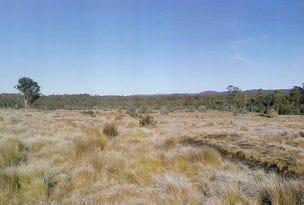 1734 Fourteen Mile Road, Bronte Park, Tas 7140