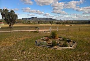 Gum Camp, Bonshaw, NSW 2361