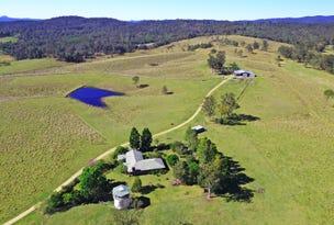 1668 Plains Station Rd, Tabulam, NSW 2469