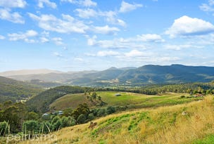 Lot 2 & 4, Moss Beds Road, Lachlan, Tas 7140