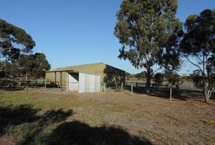 103 Old Swanport Road, Murray Bridge, SA 5253