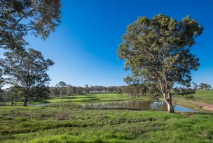 Lot 1142 Wicklow Road, Chisholm, NSW 2322