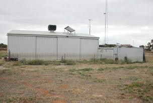 Sect. 228, Sect. 228 Micky Flat Road, Curramulka, SA 5580