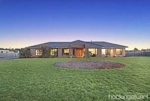 169 Blind Creek Road, Cardigan, Vic 3352