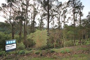 Lot 9 Lottah Road, Lottah, Tas 7216