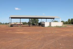 Lot 1 Carnarvon Highway, St George, Qld 4487