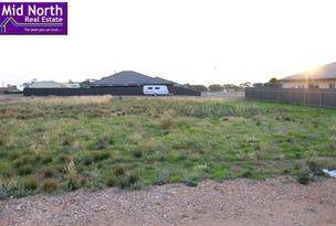 18 Cook Avenue, Blyth, SA 5462