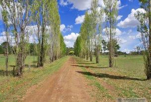 50 Holloways Lane, Arding, NSW 2358