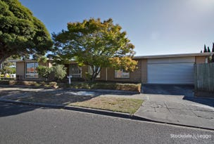 29 The Avenue, Morwell, Vic 3840