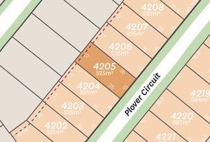 Lot 4205 Plover Circuit, Aberglasslyn, NSW 2320