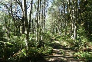 1405 Bogan Road, Golden Valley, Tas 7304