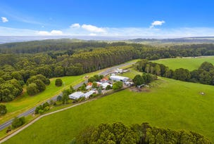 4515 Colac Lavers Hill Road, Wyelangta, Vic 3237