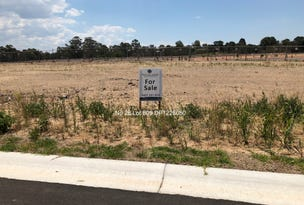 Lot 809, 28 Arena Street, Spring Farm, NSW 2570