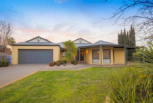 8 Wadsworth Drive, Gol Gol, NSW 2738