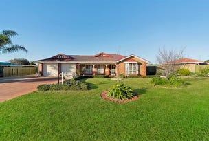 85 Fiddlewood Drive, Freeling, SA 5372