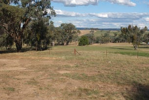 Lot 100, Peabody Road, Molong, NSW 2866