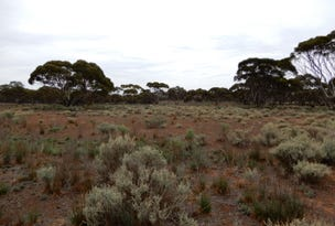 Oodla Wirra, address available on request