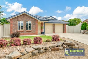 13 Meaney Drive, Freeling, SA 5372