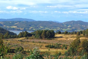 Lot 1, Harwoods Road, Castle Forbes Bay, Tas 7116