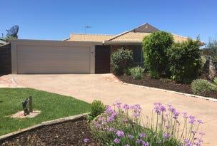 7 Macquarie Court, Mildura, Vic 3500
