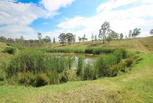 411 Bridgman Road, Singleton, NSW 2330