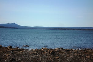 Lot 1 Arthurs Lake Road, Wilburville, Arthurs Lake, Tas 7030