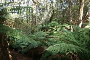 245 Youngs Road, Irishtown, Tas 7330