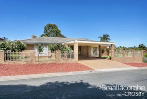 7 Brassington Avenue, Redwood Park, SA 5097