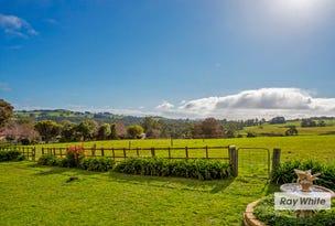 144 Little Village Lane, Somerset, Tas 7322