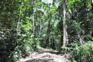 Lot 1 Bump Road, Julatten, Qld 4871