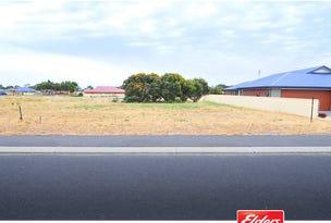 8 Trevor Drive, Kingston Se, SA 5275