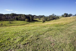 Lot 2, 146 Tewinga Lane, Bowraville, NSW 2449