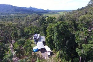63 Old Forest Creek Rd, Forest Creek, Daintree, Qld 4873