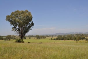 199 Black Lead Lane, Gulgong, NSW 2852