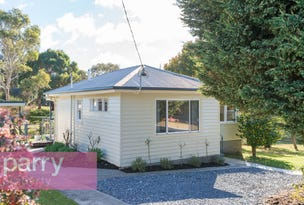 19 Gravelly Beach Road, Blackwall, Tas 7275