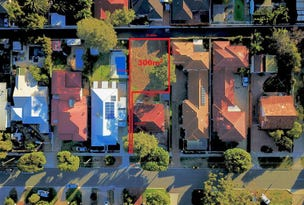 173a Alice Street, Doubleview, WA 6018