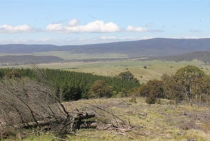 Lot 94 off South Forest Way, Kindervale via, Braidwood, NSW 2622