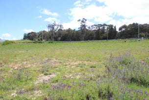 Lot 4 Norwest Estate, Orange, NSW 2800