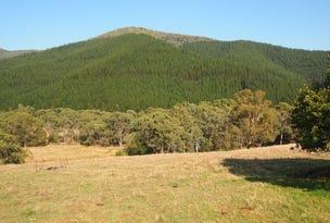Lots 102, 102A, 102B Morses Creek Road, Wandiligong, Vic 3744