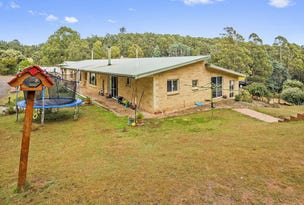 1898 Wilmot Road, Lower Wilmot, Tas 7310