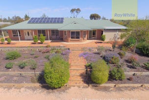 233 Farley Road, Kingston On Murray, SA 5331