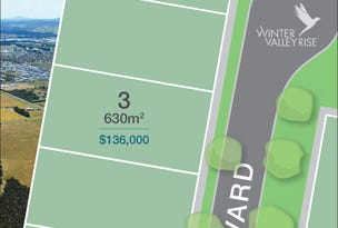 Lot 3, 235 Carngham Road, Winter Valley, Vic 3358