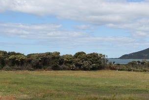 163 Irby Boulevard, Sisters Beach, Tas 7321