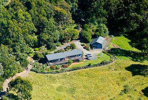 165 Tuxion Road, Apollo Bay, Vic 3233