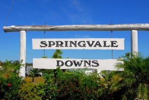 Lot 12 SPRINGVALE DOWNS, Walligan, Qld 4655