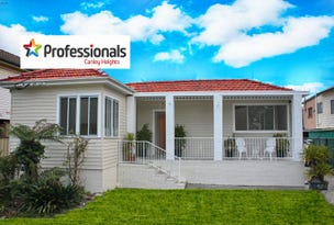 16 Cook Avenue, Canley Vale, NSW 2166