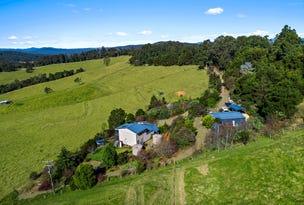 370 Schultz Road, Dorrigo, NSW 2453