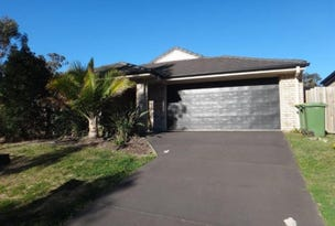 58 McCorry Drive, Collingwood Park, Qld 4301