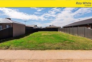35 (Lot 1701) Petherton Road, Andrews Farm, SA 5114