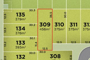 Lot 309, Irma Circuit (Solander), Park Ridge, Qld 4125